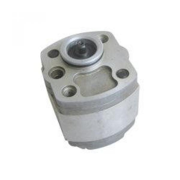 QT2323-6.3-6.3MN-S1162-A ปั๊มเกียร์ไฮดรอลิก